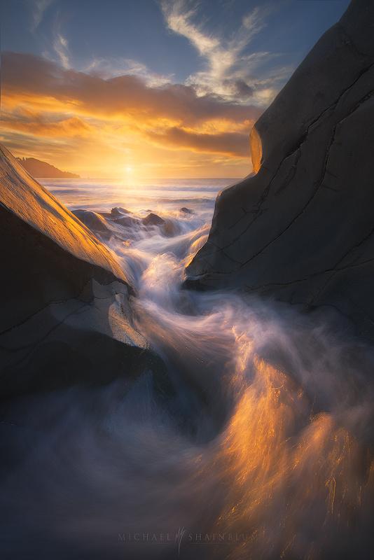 Phoenix by Michael Shainblum