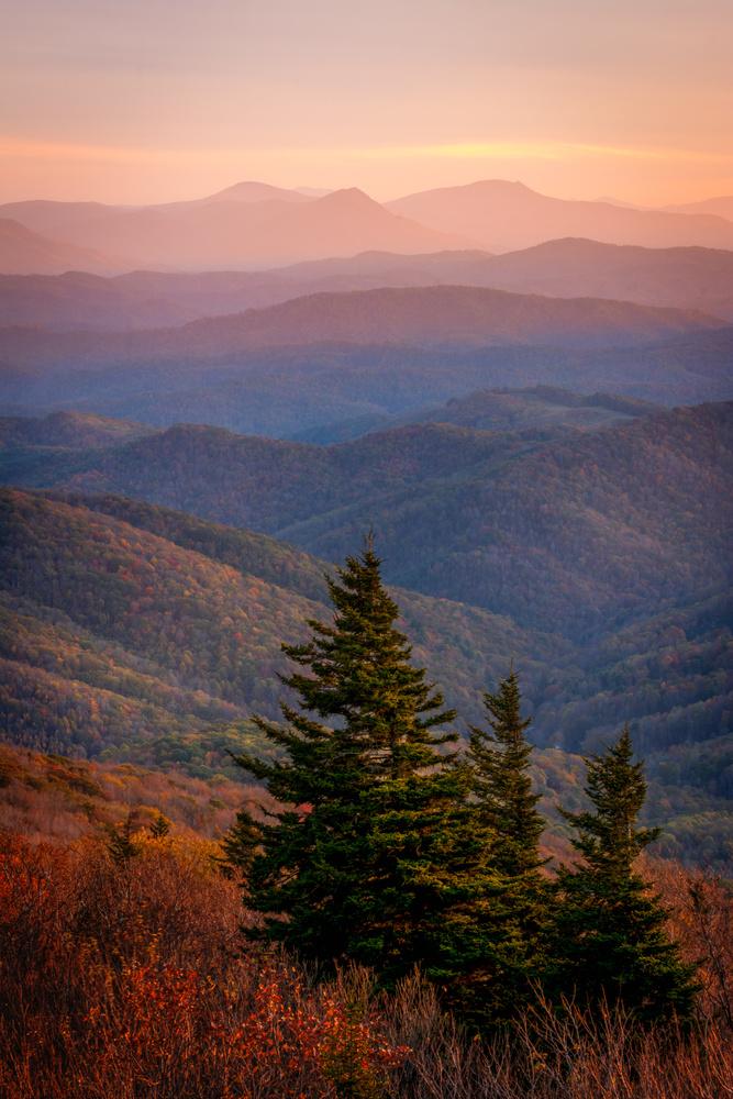 Grayson Highland State Park by Brandon Dewey