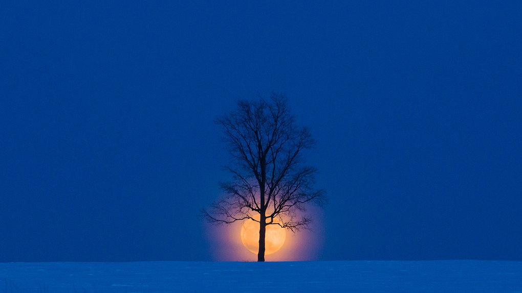 Snow Moon Rising by Keith Walters