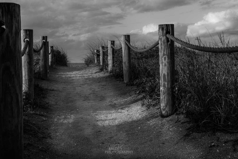 Beach Access by Robert Zilch