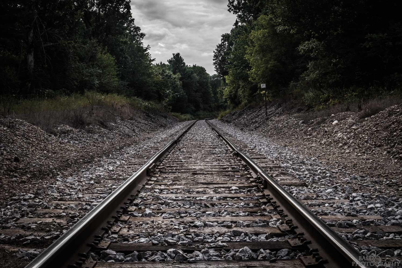 Tracks by Robert Zilch