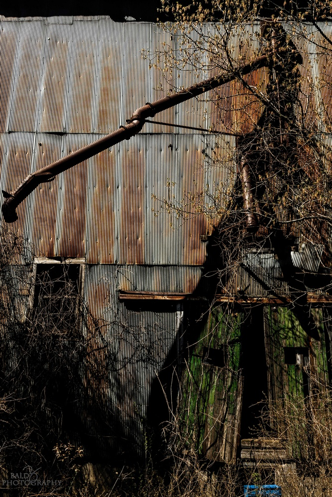 Old Grain Elevator - 4 by Robert Zilch