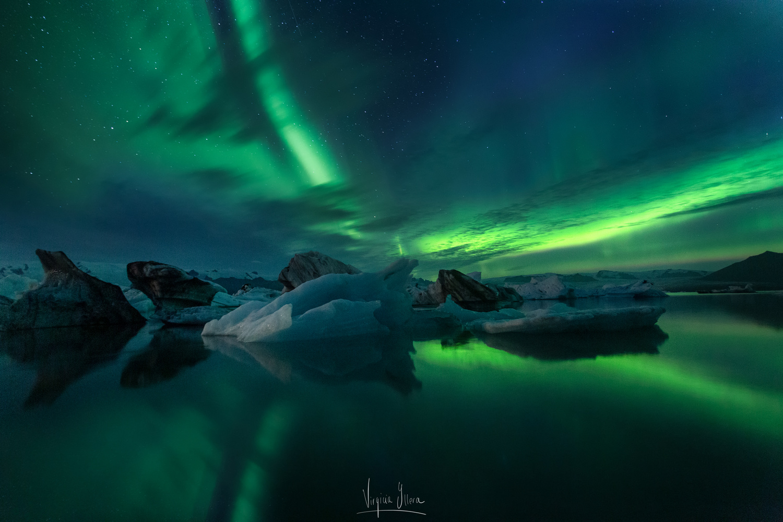 GREEN DREAM by Virginia Yllera