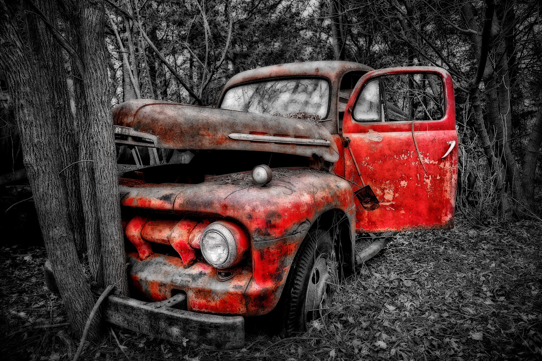 Tree Hugger, Rust in Peace, Dead End, Bumper Crop...hahaha by Hank Rintjema