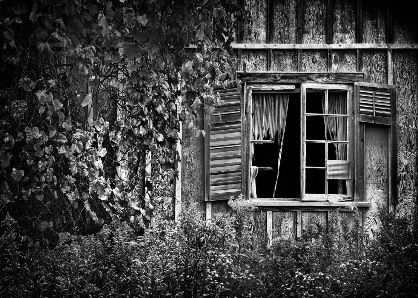 Abandoned by Hank Rintjema