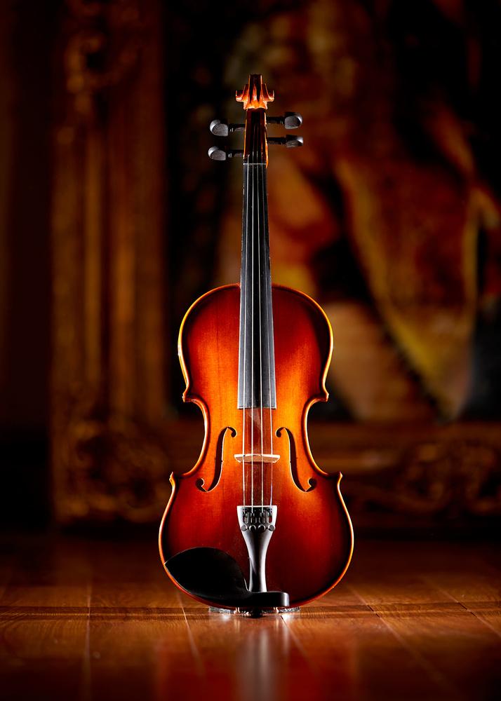 Violin by Hank Rintjema