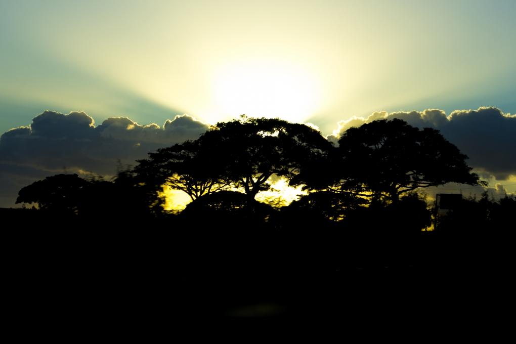 Peeking Sun by Jody Baumle