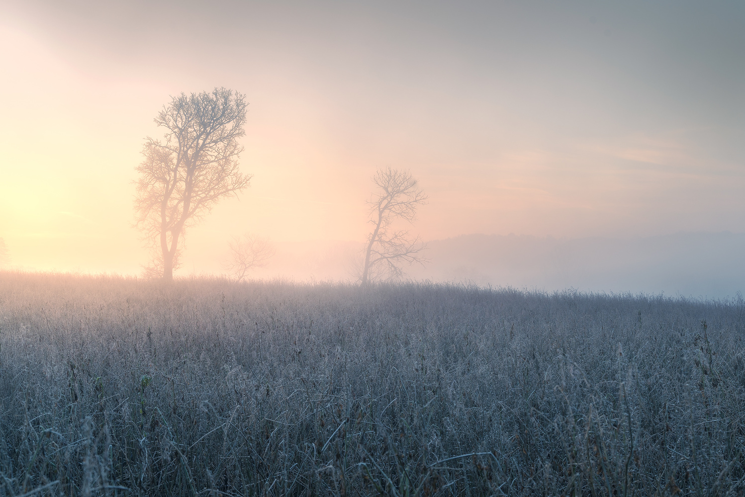 Freezing winter morning by Christian Möhrle