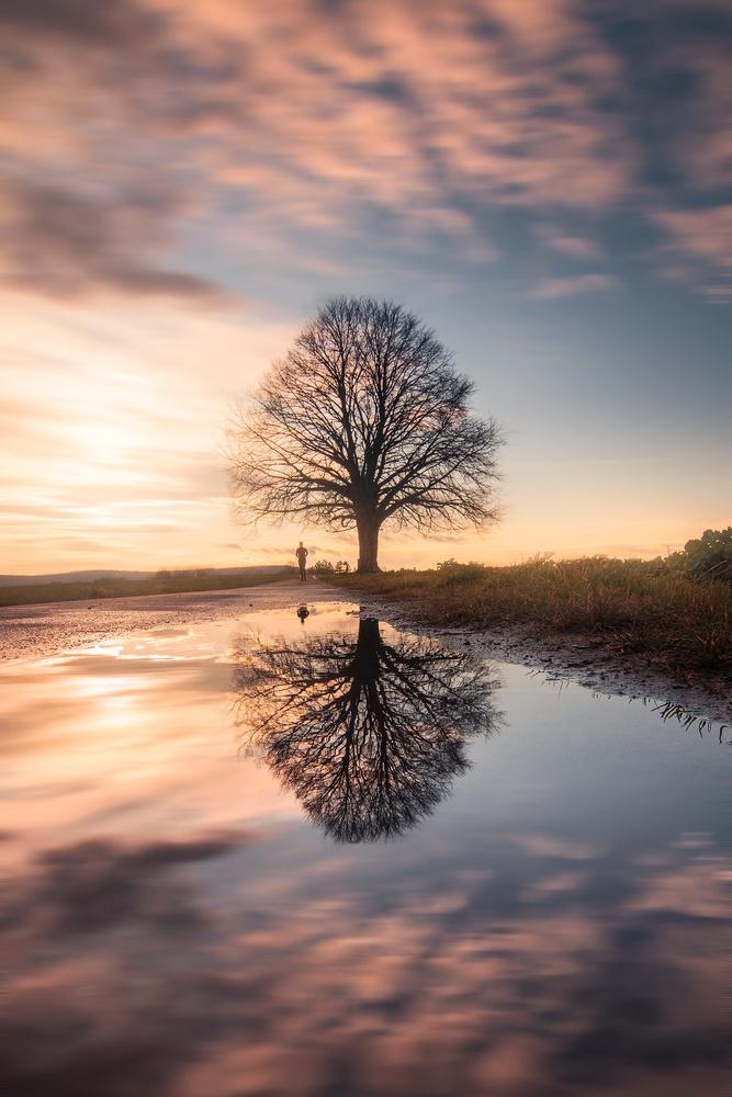 Sunset Reflection by Christian Möhrle