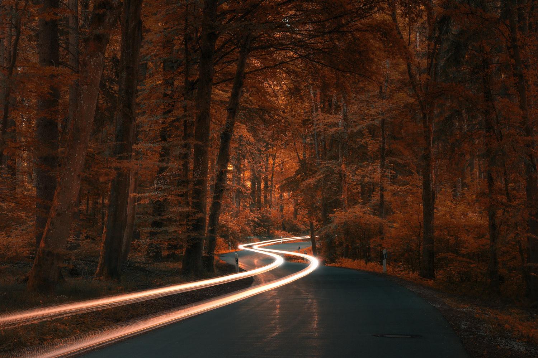 Autumn Road by Christian Möhrle