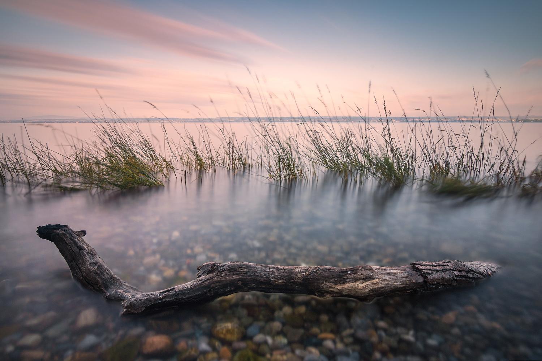 Calm Morning by Christian Möhrle