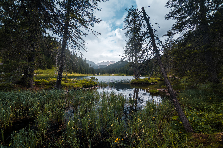 Calm Mountain Lake by Christian Möhrle
