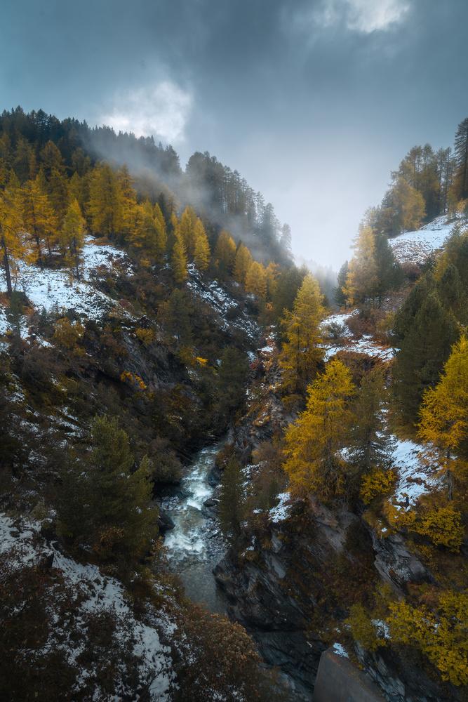 Autumn vibes by Christian Möhrle