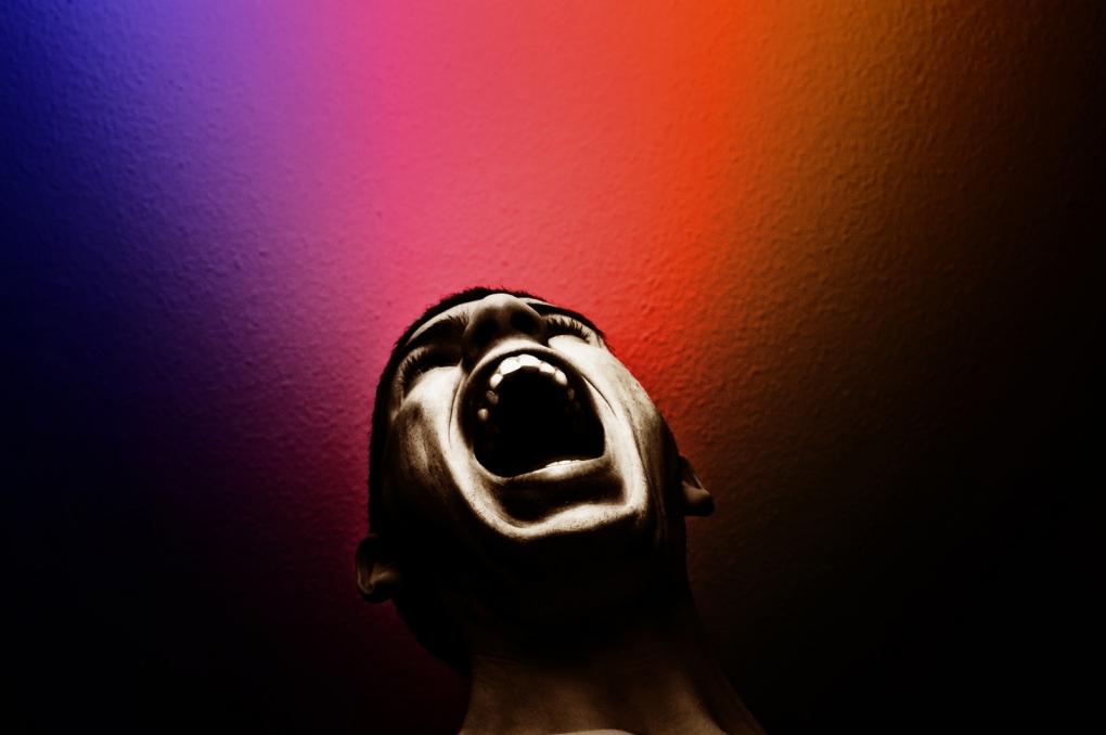 """Screaming For Help"" (AKA ""The Stolen Scream"") by Noam Galai"