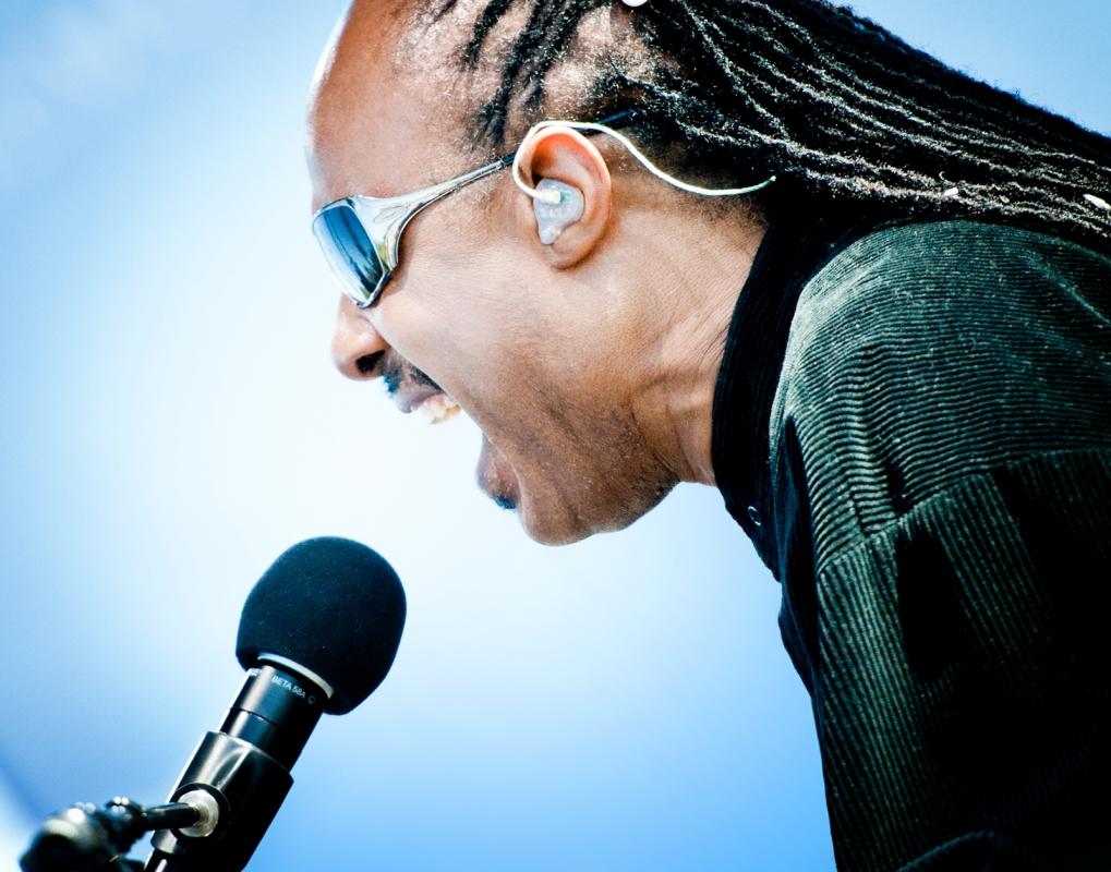 Stevie Wonder by Noam Galai