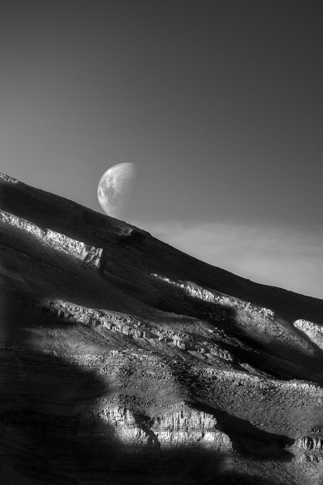 Moonrise by Devin Martino-Atsatt
