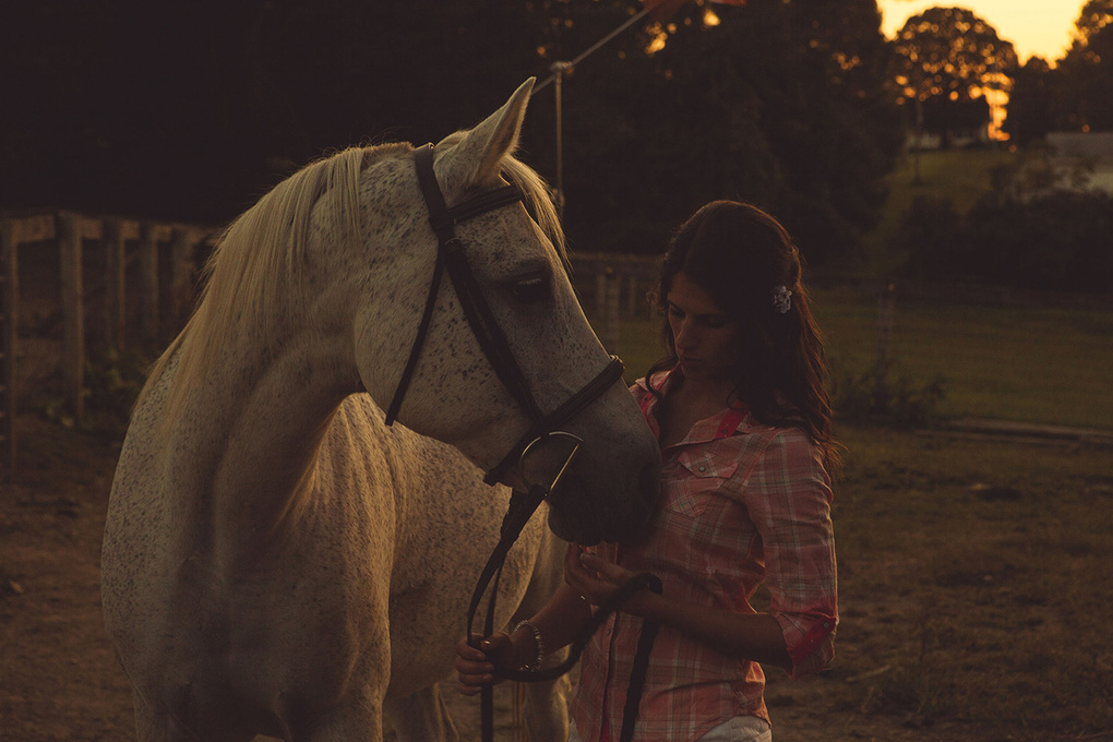 Movie Horse by Nathan Joseph Dodson