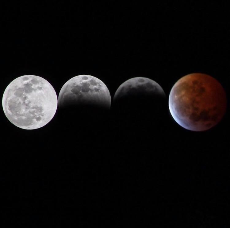 Super Blood Wolf Moon by Mercedes Spinetti