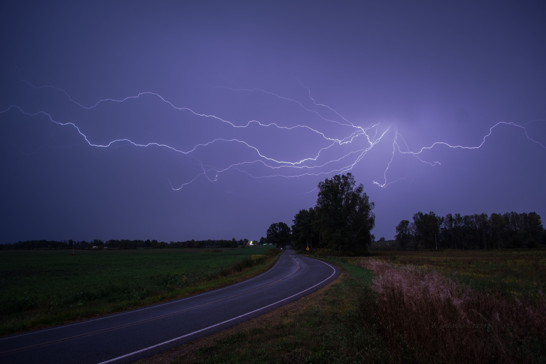 Spider Lightning 000001 by Tony Ripley