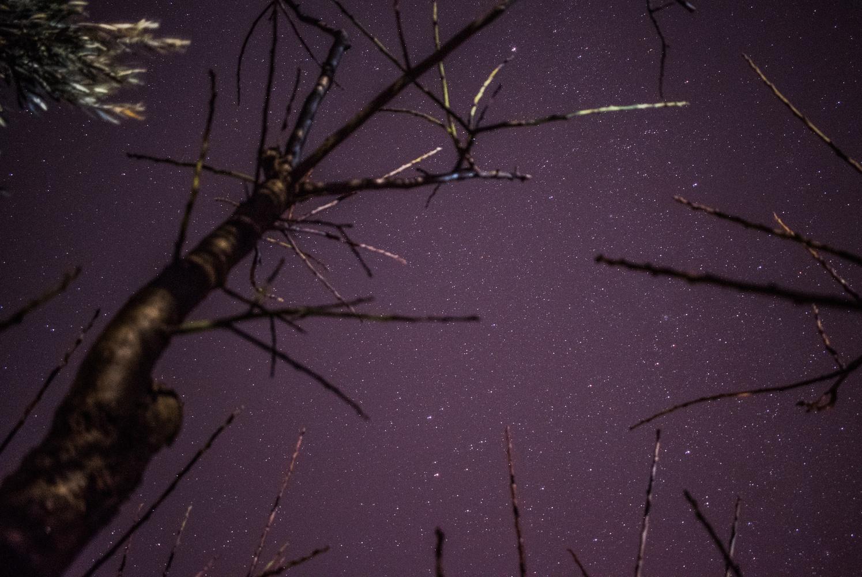 Caught below the stars by George Miteletsis