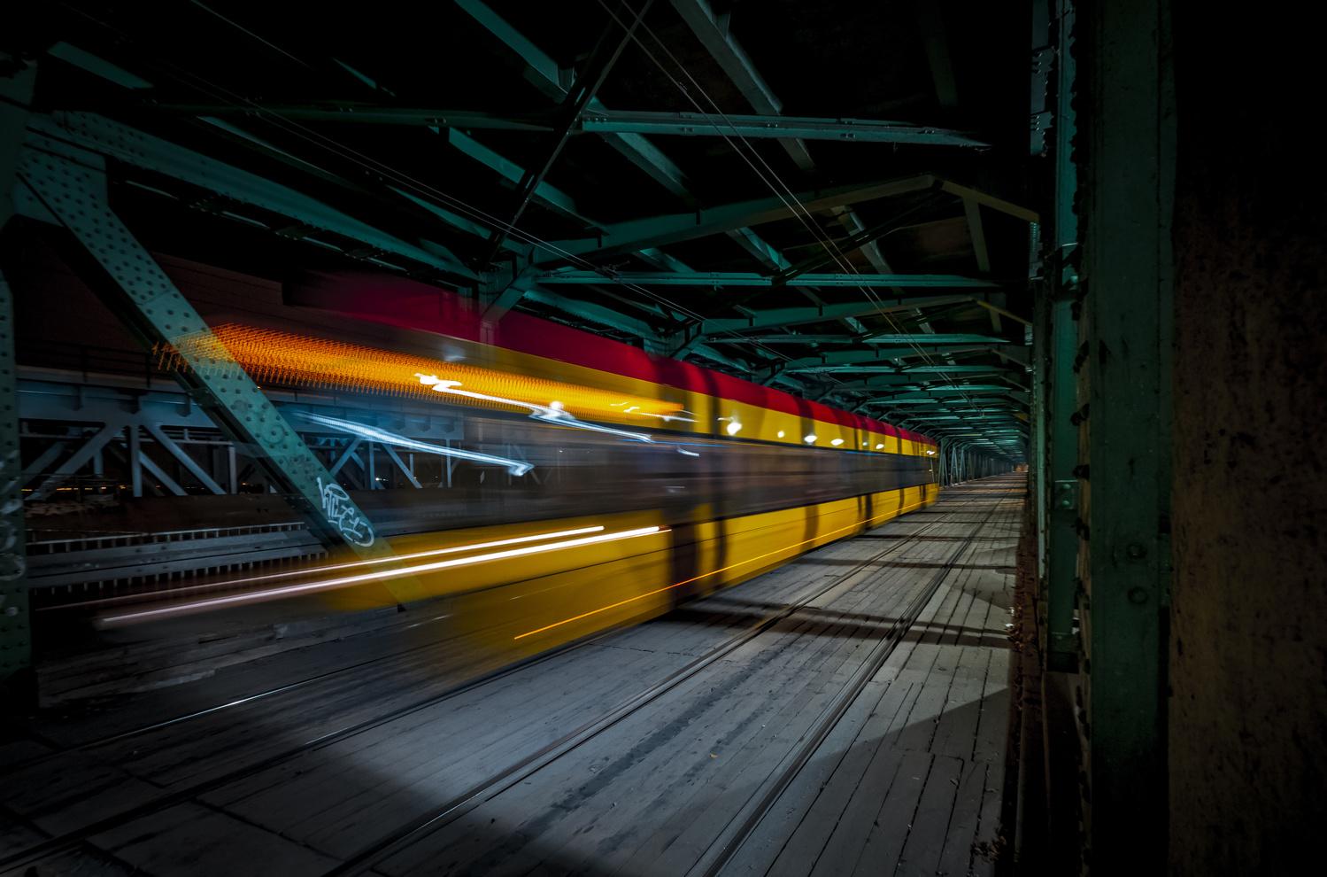 Bridge by Jerzy Wolochowicz