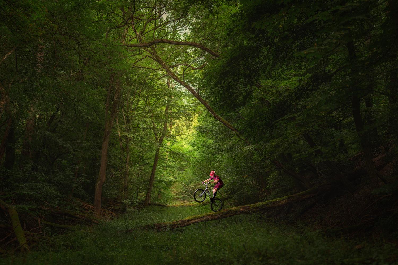 Ride it by Michael Rocktaeschel