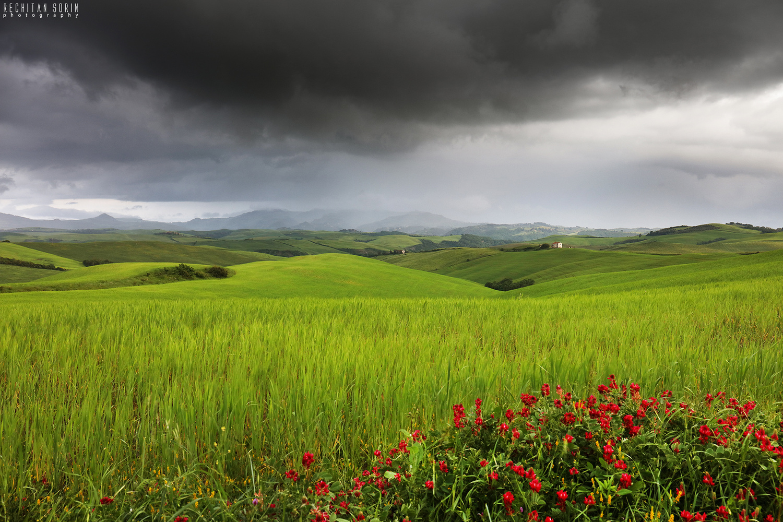 Tuscany by Rechitan Sorin