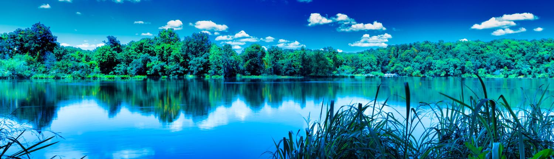 Savannah River by Steve Gaines