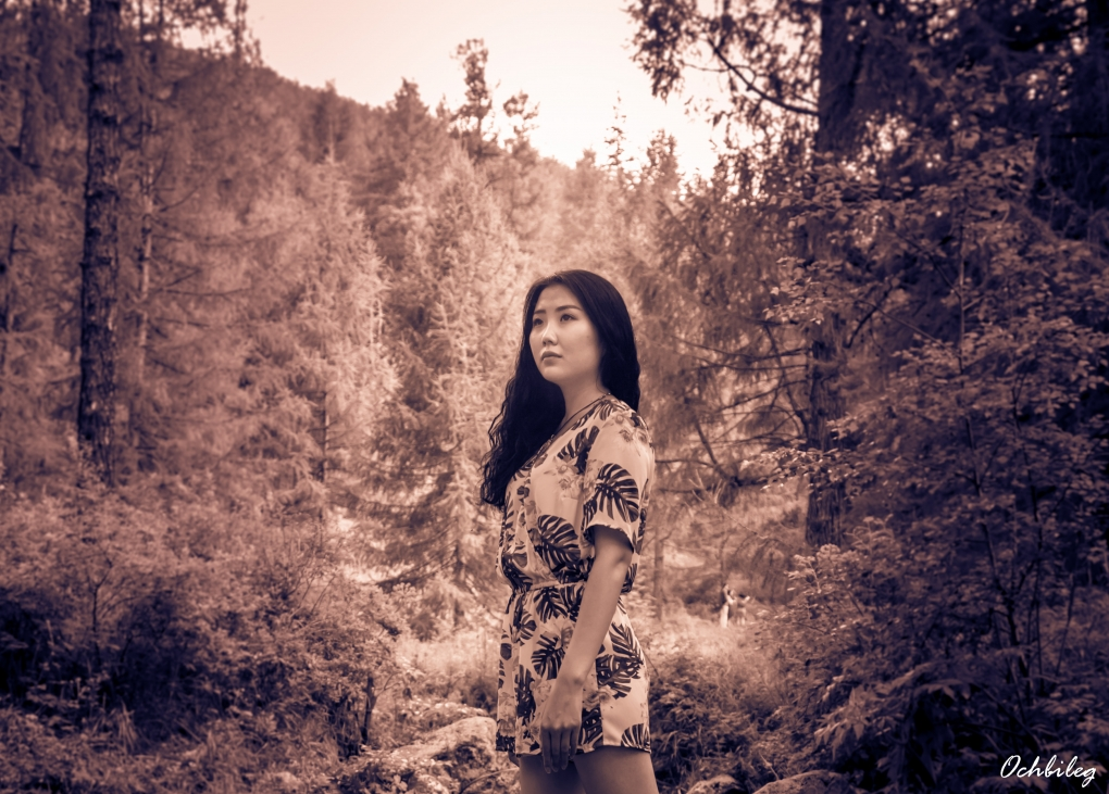 Forest beauty by Ochbileg Khurts