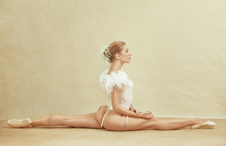 Poppyseed Dancer IV by Irina Jomir