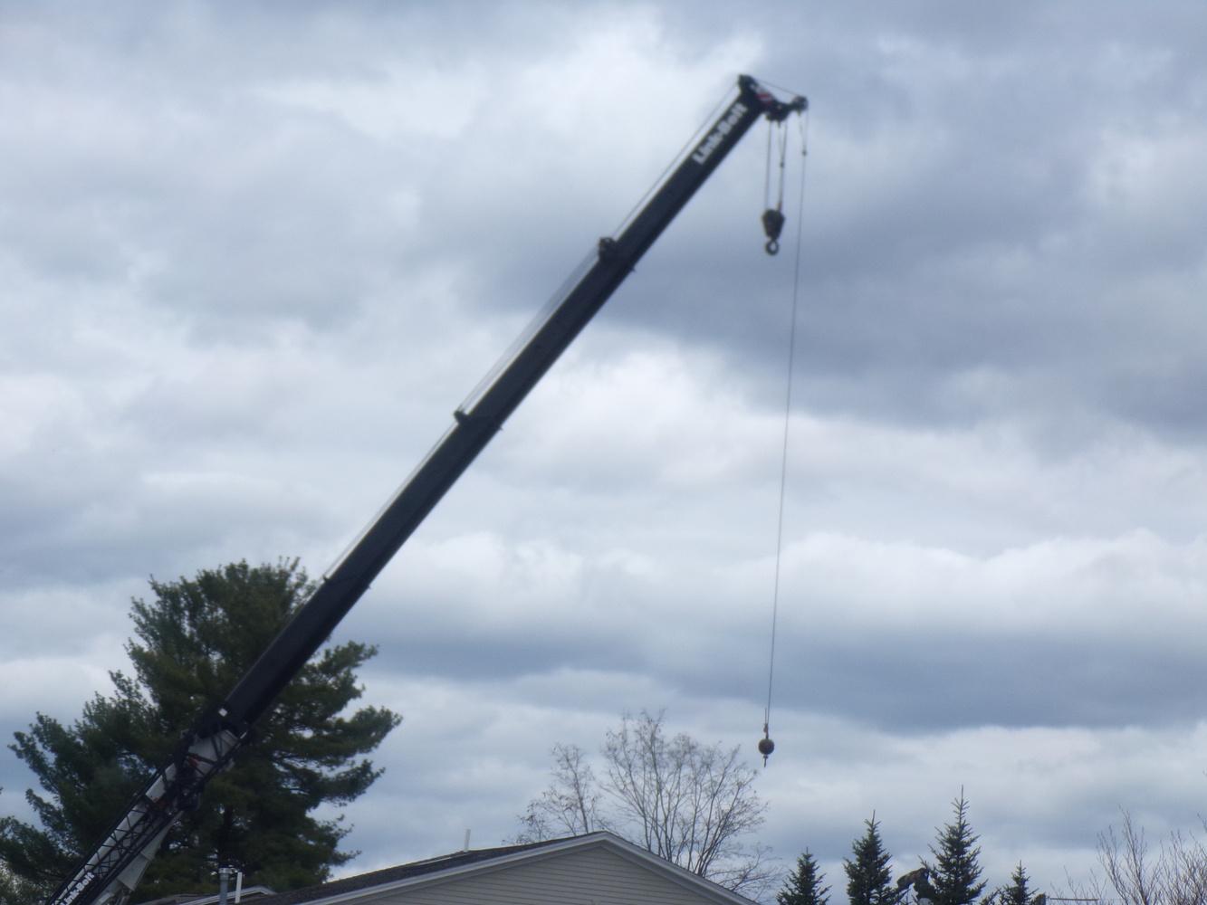 Crane in the Sky by Tammy Higgins