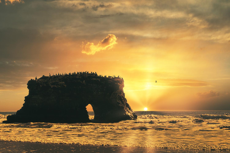 Cormorant Rock by Joe Burdick