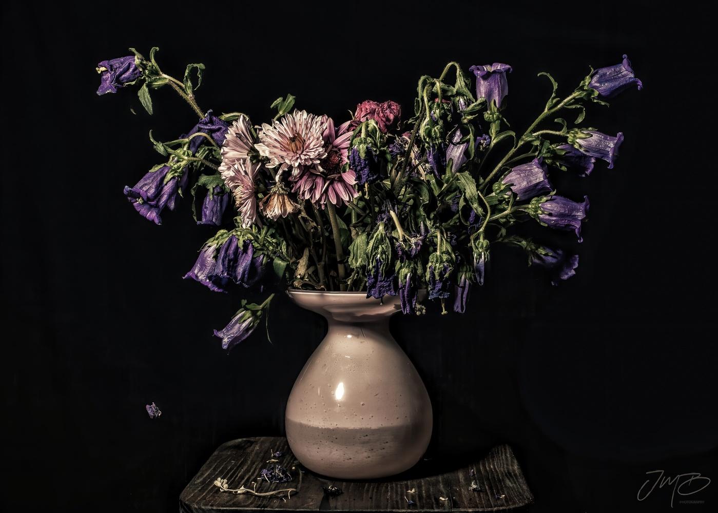 Moribund Beauty by Joe Burdick