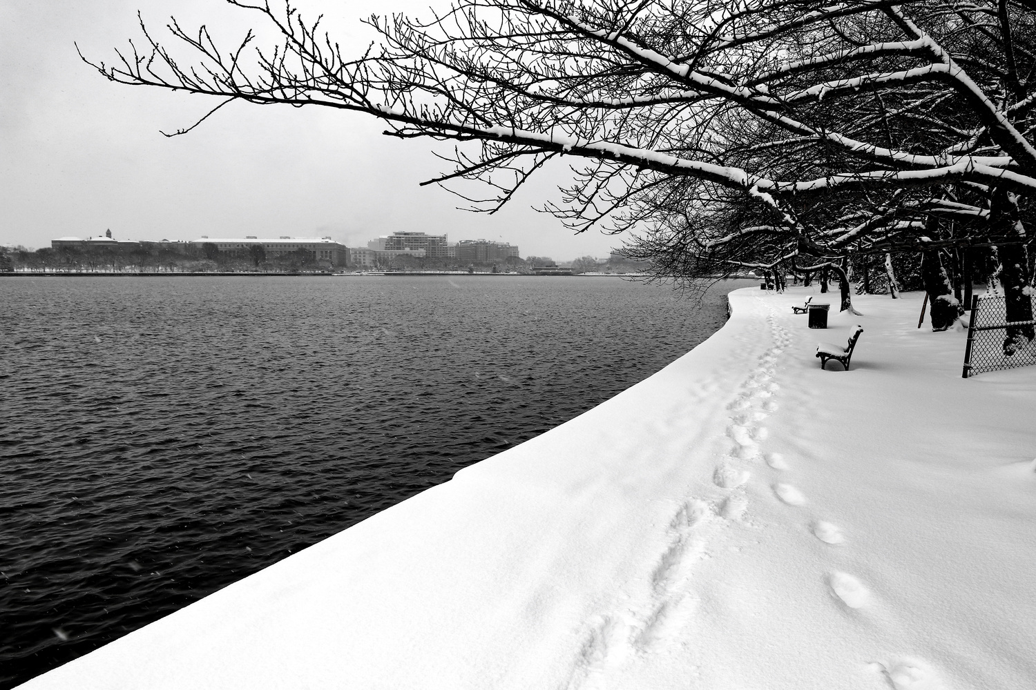 Snowy Day at the Tidal Basin by Bruce Grant