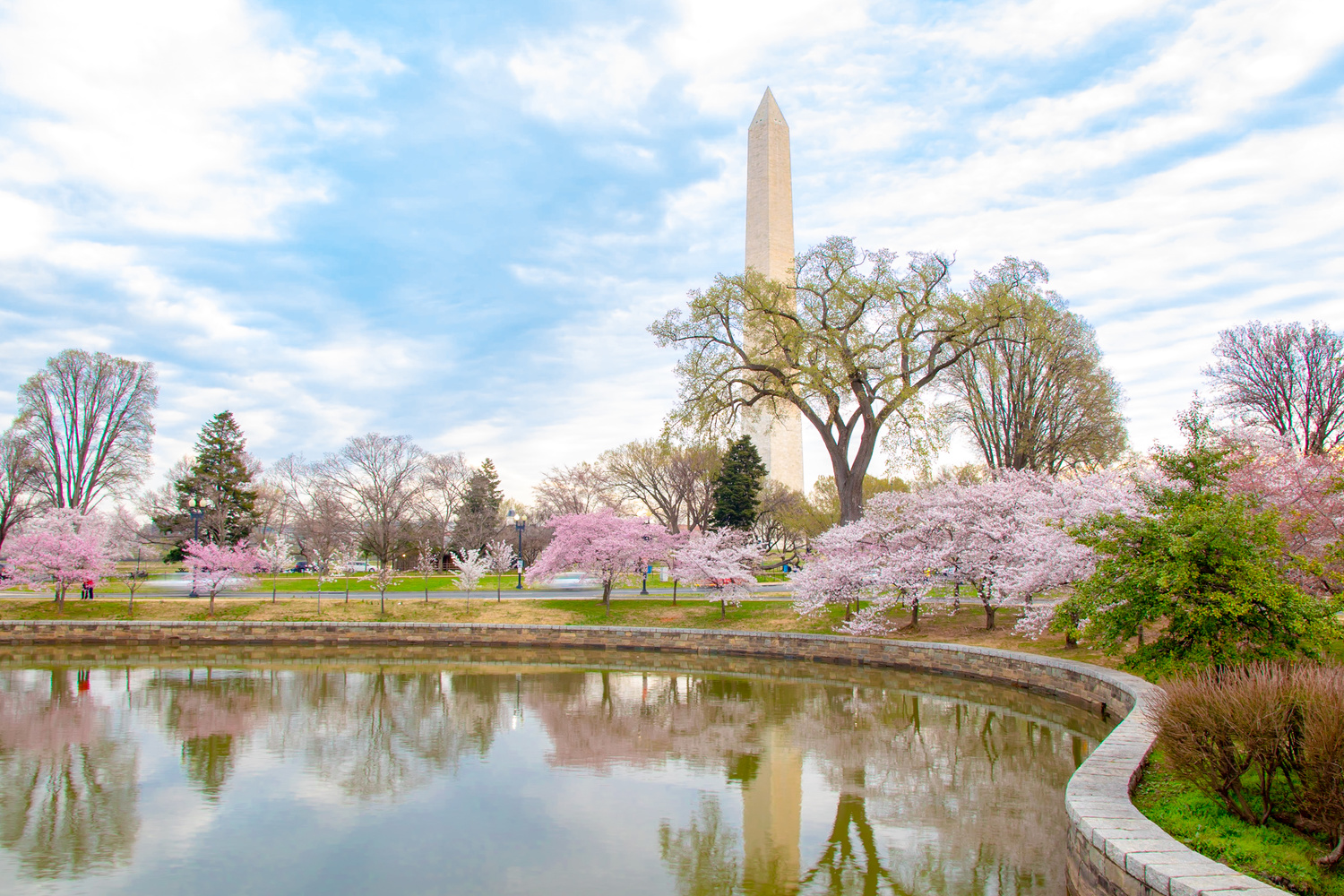 Spring at the Tidal Basin in DC by Bruce Grant