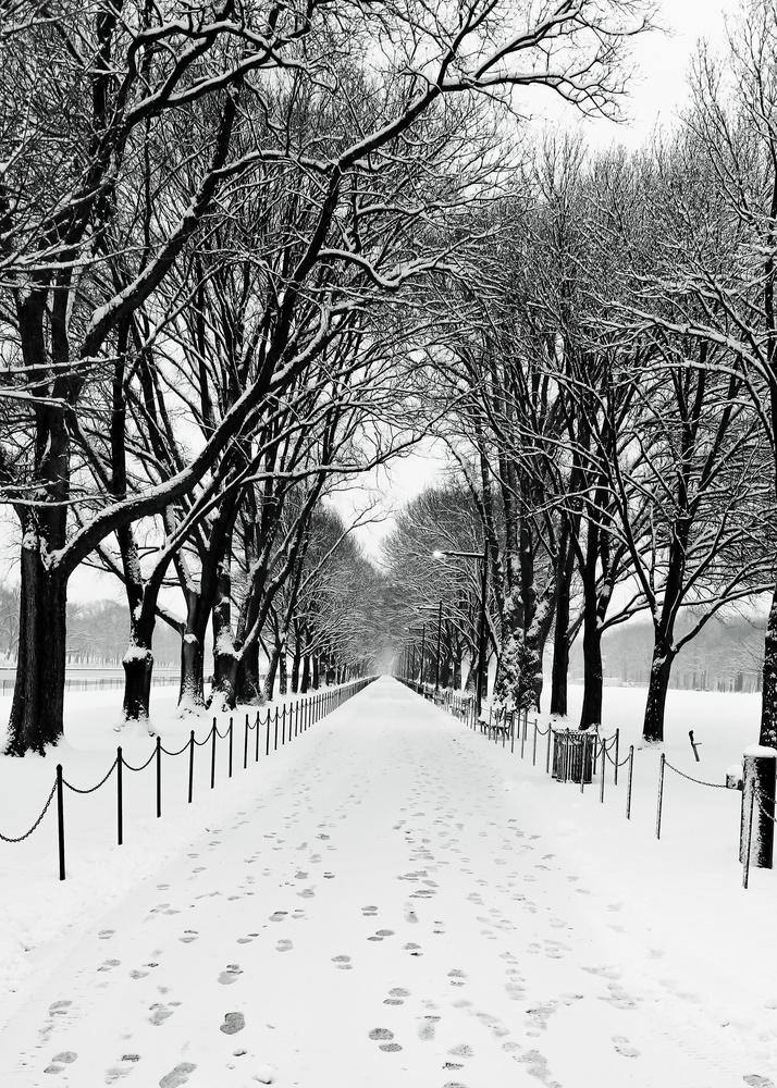 Snowy Footpath by Bruce Grant