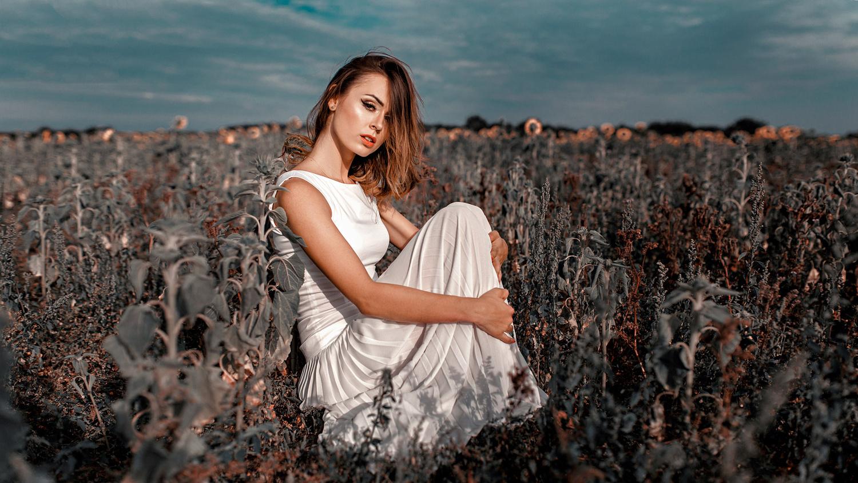 Sunflowers by Damian Piórko