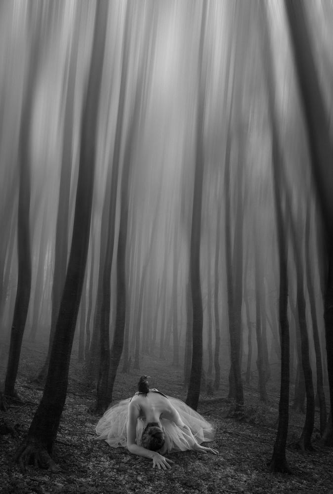 Guilt by Teodora Dimitrova