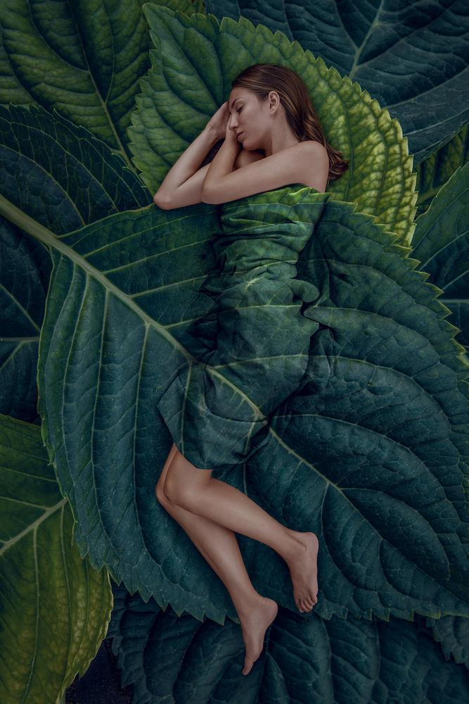Deep Rest by Teodora Dimitrova