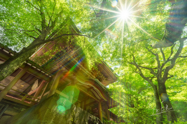 Shinto Shrine in Japan by Ko Eto