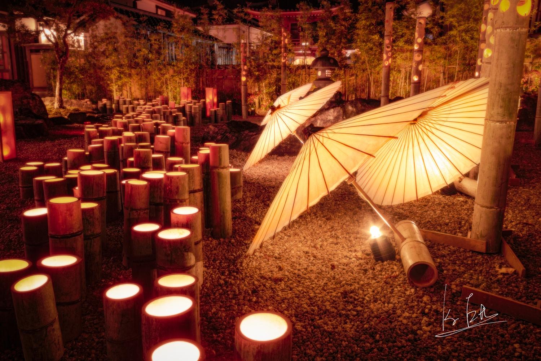 Japanese Bamboo by Ko Eto