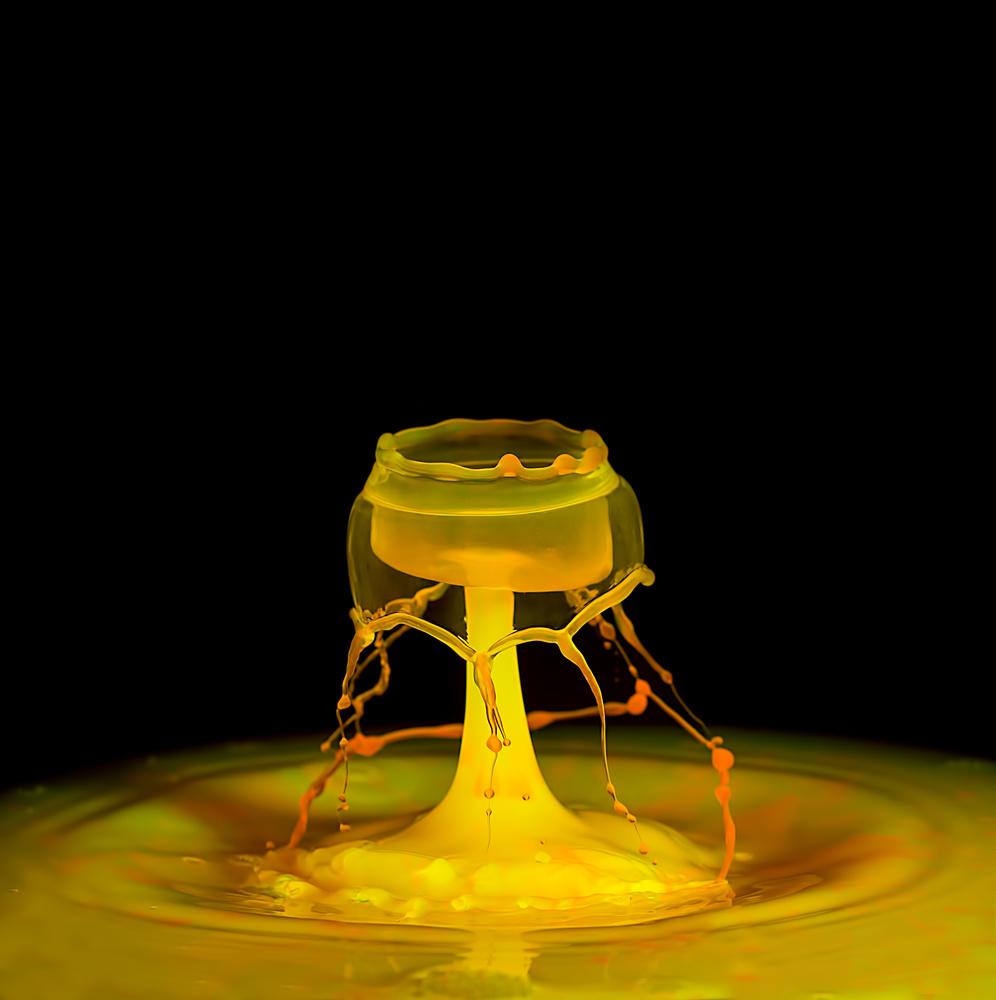 Water Chalice by Stuart Willson