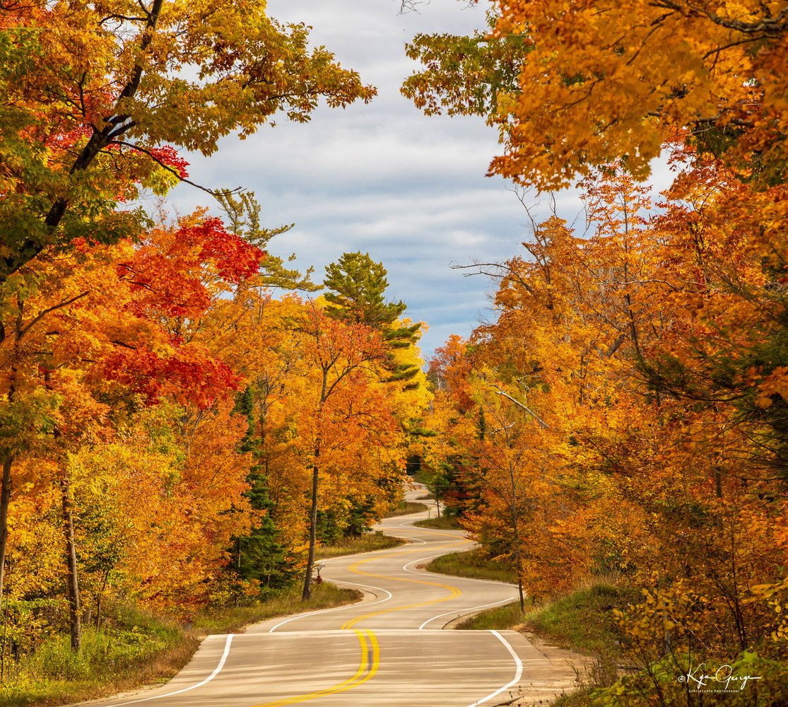 Winding Road by Kym George