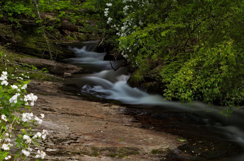 Hidden Mountain Creek by Adam Morton