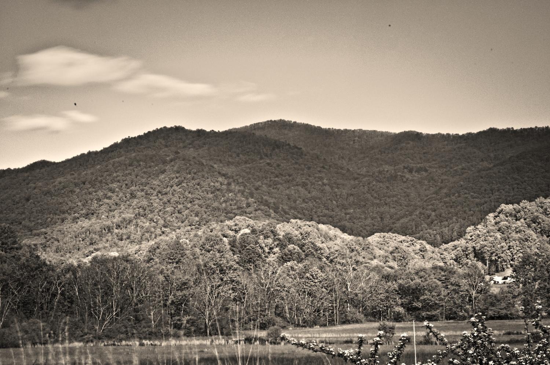 Shadows of the Smokey Mountains by Adam Morton