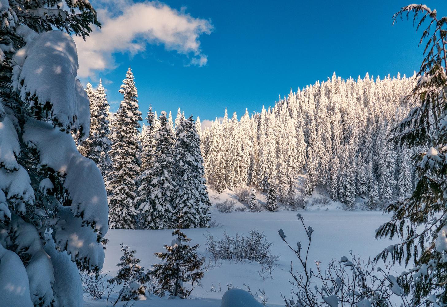 winter happens here by Wasim Muklashy
