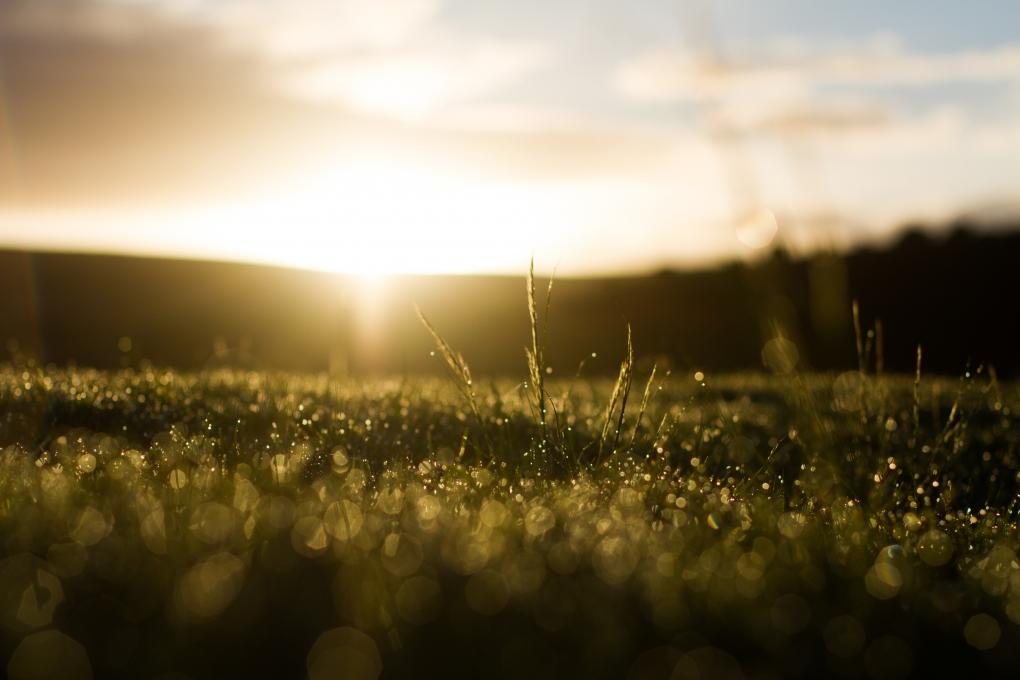SunRise by Tobias van Schalkwyk