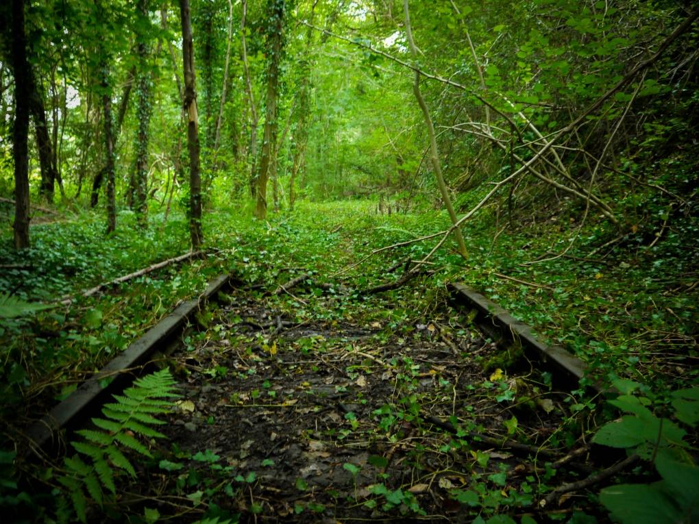 150 Year Old Abandoned Railway by Daniel John