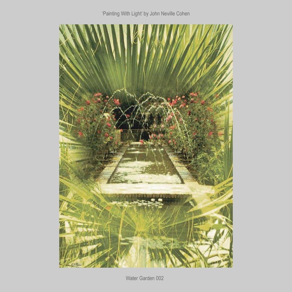 Water Garden by John Neville Cohen