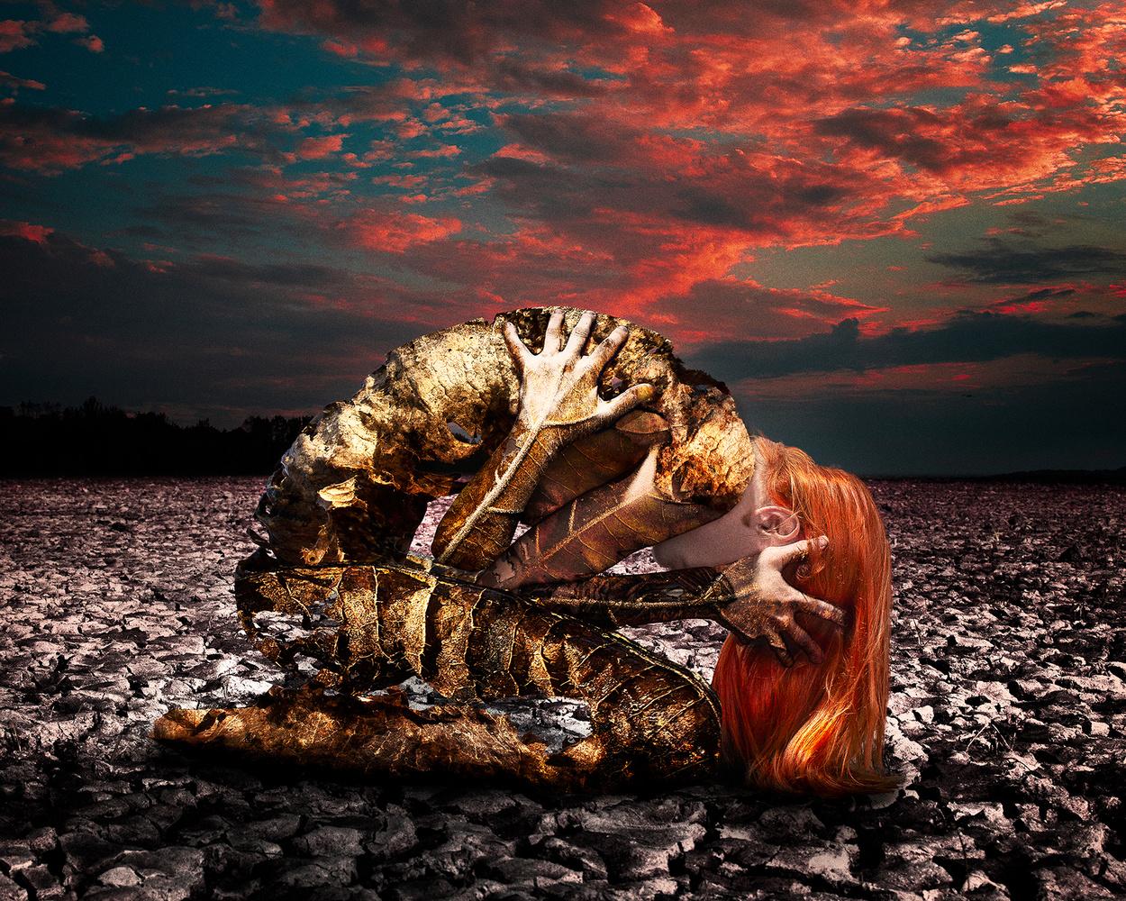 Decay by Scott Meyer